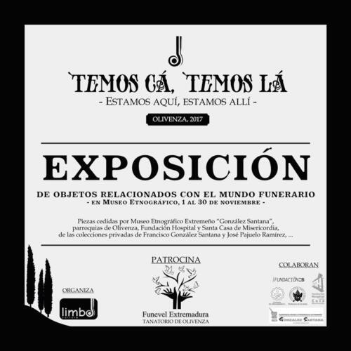 Exposición- web