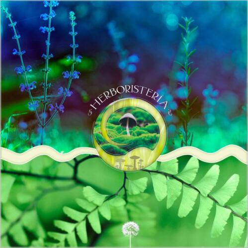 Herbodietética-Caty- mural